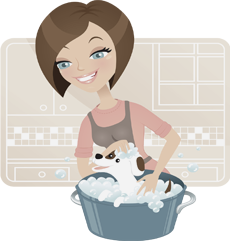 Domestic Cleaning Serivces